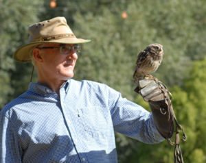 Owl-bert